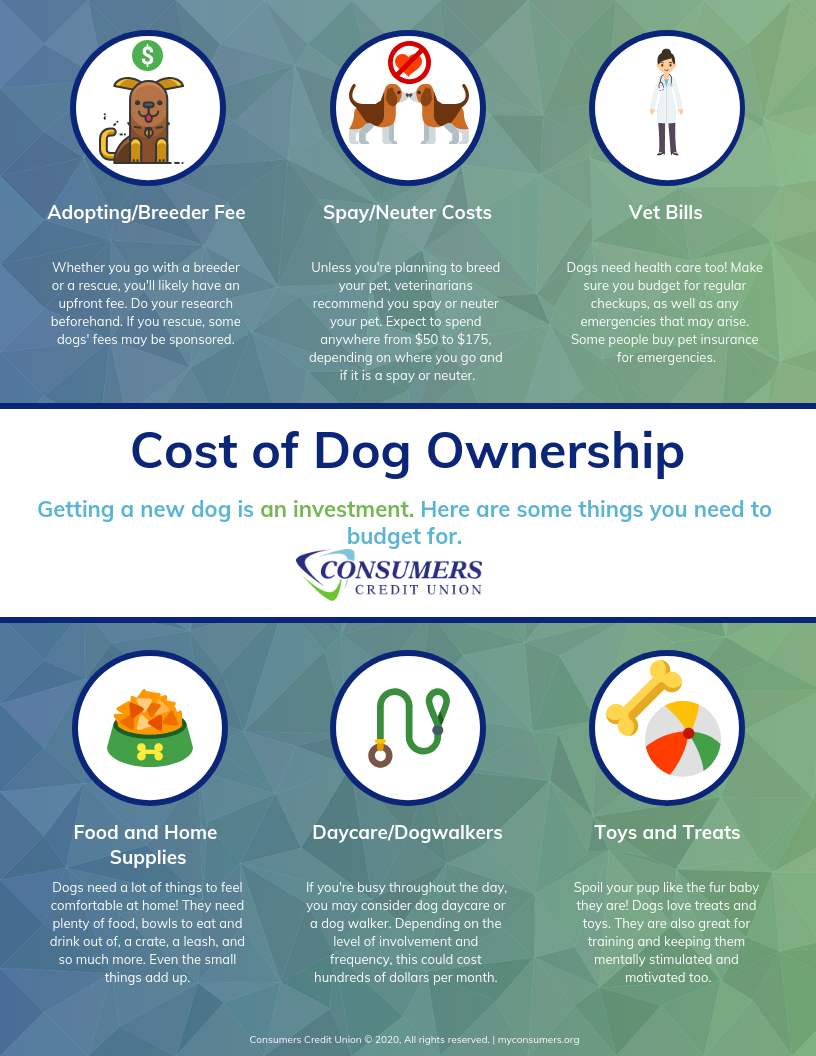cost of a new pet - consumers credit union