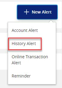 Screen capture displays image of button highlighting area to select history account alert