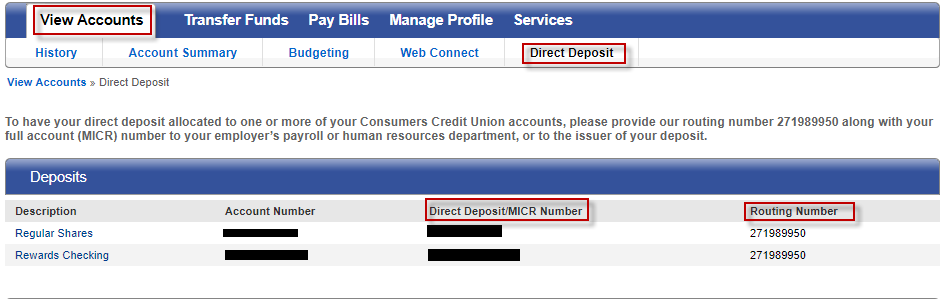 Screen capture showing direct deposit accounts